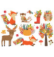 set of isolated forest animals and autumn plants vector image