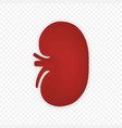 3d kidney human renal icon isolated vector image vector image