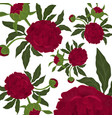 abstract seamless pattern with isolated red roses vector image