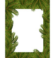 Frame spruce branch Tree frame for text White vector image vector image