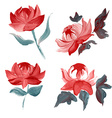 oil painted flowers set vector image