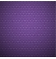 Purple metal or plastic texture with holes vector image vector image