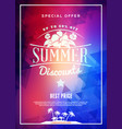 summer sale flyer or poster summer discount label vector image