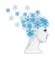 Winter girl with snowflakes vector image vector image