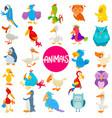 cartoon birds animal characters large set vector image