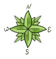 compass rose made green leaves eco travel vector image