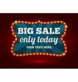 Neon advertising sign - Big Sale vector image