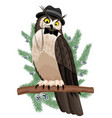 owl sitting on a branch vector image vector image
