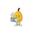 photographer loquat cartoon mascot for diet food vector image vector image