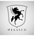Power pegasus with wings vector image vector image