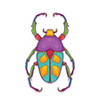 Colorful Beetle Bug Insect Jumnos ruckeri vector image vector image