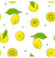lemon drawing black outline seamless pattern vector image