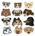 set cartoon dog faces collection portraits vector image