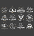 set of cinema vintage emblems vector image