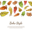 boho style banner with colorful feathers native vector image