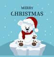 christmas card of beautiful polar bear baby vector image