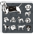 Dog Breeds - set vector image