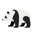 panda walking flat animal vector image