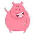 pig animal character cartoon vector image vector image