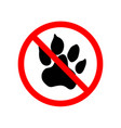 animals are not allowed red forbidden sign on vector image vector image