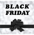 Black Friday Designs vector image