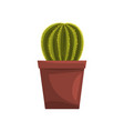cactus indoor house plant in brown pot element vector image vector image