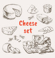 cheese set hand drawing vector image