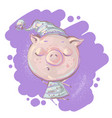 cute little pig character sleeping in night vector image vector image