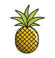 delicious pineapple fruit icon vector image vector image