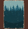 forest landscape colorful poster vector image vector image