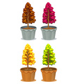 Four pots of plants vector image vector image