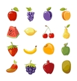 Fruit icons in cartoon style vector image