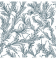 natural seamless pattern with outline rosemary vector image vector image