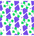 seamless pattern with grapes bundles and leaves vector image vector image
