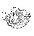 splash milk apple vector image vector image
