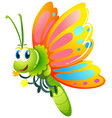 butterfly with yellow and pink wings vector image vector image