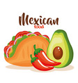 delicious mexican taco with vegetables vector image