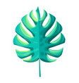 monstera tropical leaf plant vector image vector image