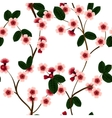 Seamless pattern with pink cherry flowers and leaf vector image vector image