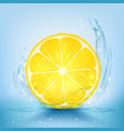 slice of lemon and juice with splashes and drops vector image