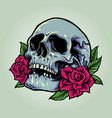 sugar skull anatomy with roses vector image