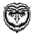 tattoo owl head vector image