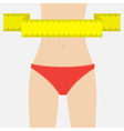 Woman figure waist red underwear Measuring tape vector image