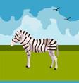 zebra icon african animals vector image