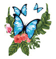 beautiful butterfly cartoon vector image vector image