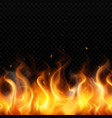 fire flame realistic background vector image