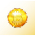 golden bitcoin coin icon vector image