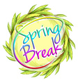 A spring break template vector image vector image