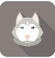 Animal Portrait With Flat Design Siberian H vector image