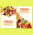 fruit fresh for farm market set banners vector image